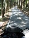 20050503_road